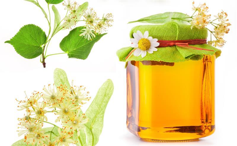 Мед из липы в Одессе
